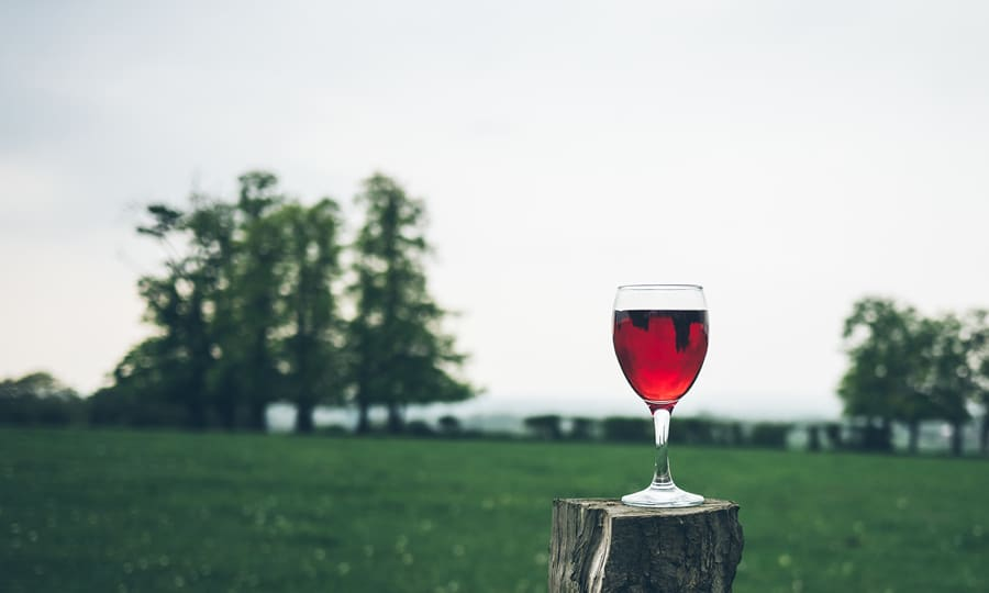 Smaka Svenska Viner 2020