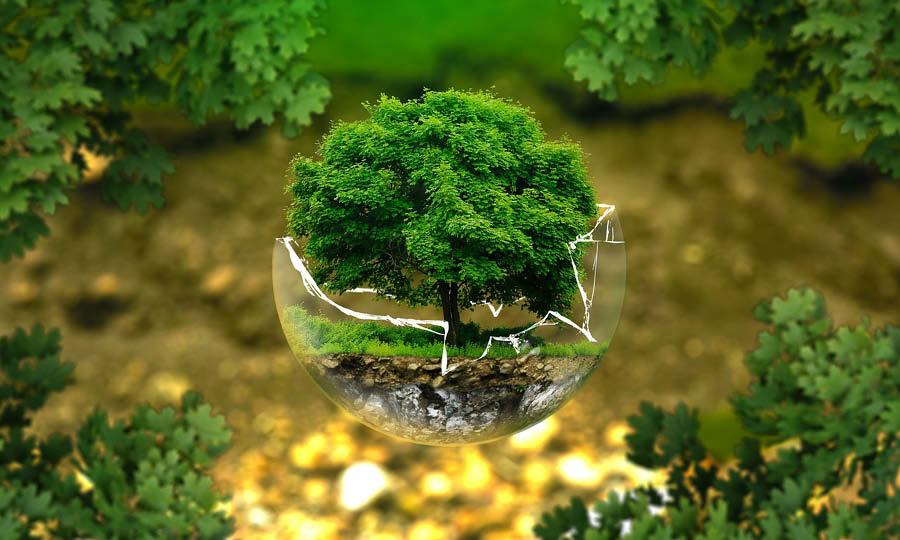 Eco Life Scandinavia 2020