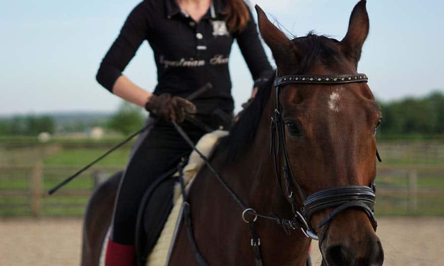 Jönköping Horse Show 2020