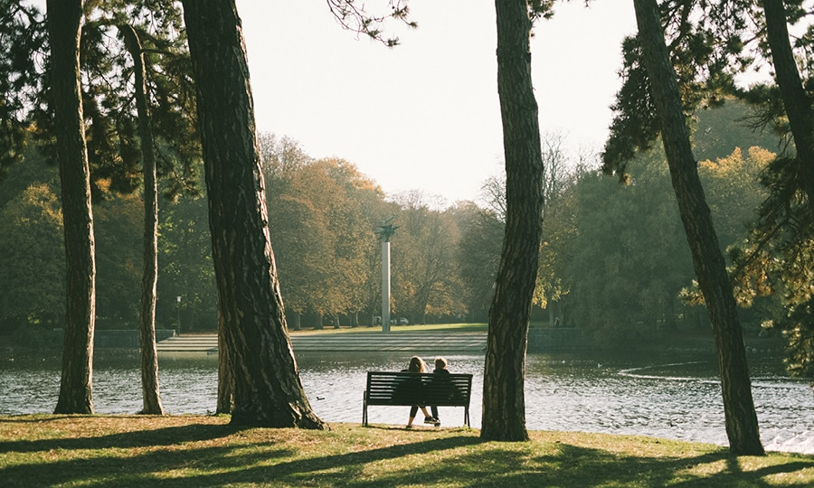 Park & Gata 2020 Kalmar